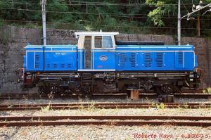 Il locomotore D1